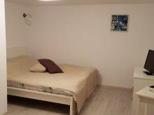 Apartment Stâlpu, Vaso Apartment