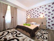 Bed & breakfast Alun (Boșorod), Trident Guesthouse