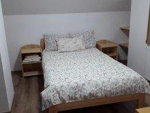 Accommodation Barațcoș, Bagoly Guesthouse