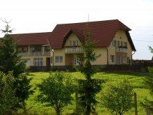 Accommodation Rugănești, Margaréta Guesthouse