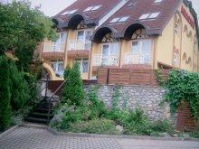 Casă de oaspeți Mezőcsát, Casa de oaspeți Abacon