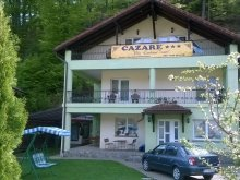 Accommodation Timișu de Jos, Travelminit Voucher, 7 Stairs Canyon Villa