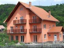 Accommodation Bucin (Praid), Bálint Guesthouse