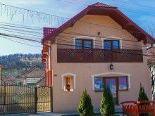 Accommodation Băița, Muskátli B&B