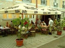Accommodation Maklár, Nefelejcs Hotel