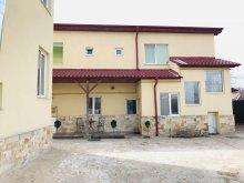 Accommodation Cornești (Mihai Viteazu), Ryana Guesthouse