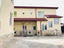 Accommodation Valea Ierii, Ryana Guesthouse