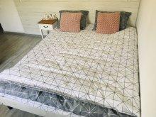 Accommodation Călăţele (Călățele), Ryana Guesthouse
