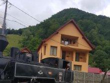 Casă de oaspeți Coltău, Casa Ile