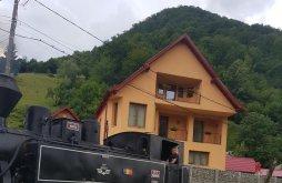 Vilă Hălmăsău, Casa Ile