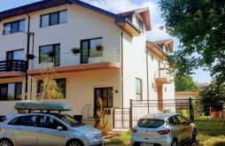 Accommodation Techirghiol, Sanitas Villa