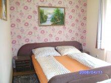 Accommodation Hajdúszoboszló, Halasi Apartments