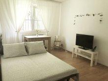 Accommodation Constanța, La 3 pași de mare Apartment