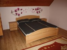Accommodation Csabrendek, Adam and Eva Apartman