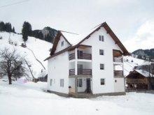 Vendégház Scheiu de Sus, Rares Vendégház