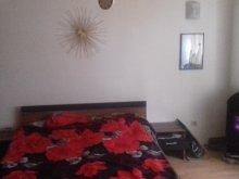 Accommodation Florești, Happy Apartment