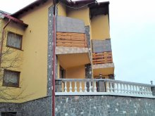 Accommodation Cotenești, Doina Guesthouse