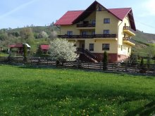 Accommodation Vârfu Dealului, Maridor Guesthouse