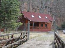 Casă de vacanță Lacul Roșu, Casa de vacanță Holiday
