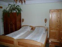 Accommodation Petrindu, Tünde Guesthouse