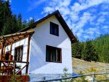 Cabană Bălușești (Dochia), Cabana Csillag