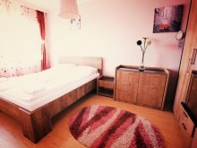 Accommodation Sibiu county, HMM Apartment