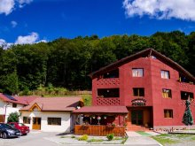 Accommodation Poiana Horea, Maria B&B