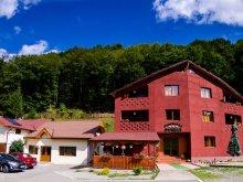 Cazare Munţii Bihorului, Voucher Travelminit, Pensiunea Maria