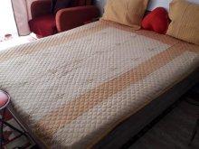 Accommodation Bușteni, Teea House