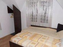 Accommodation Braniștea, Ilinca Chalet
