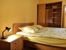 Accommodation Bucharest (București) county, Unirii Three Studio