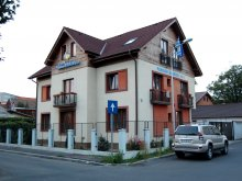 Accommodation Dragomirești, Pension Bavaria