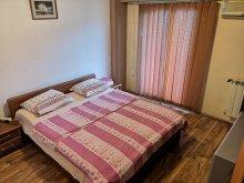 Accommodation Burduca, Unirii Two Apartment