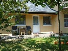 Accommodation Nagydobsza, Hauptman Apartment