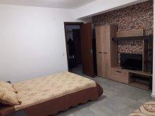 Apartament Vișina, Apartament Florina - Vila Marie