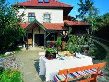 Accommodation Gyöngyössolymos, Nandi Magdi Guesthouse & Winery
