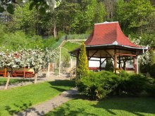 Bed & breakfast Braşov county, Cristina Guesthouse