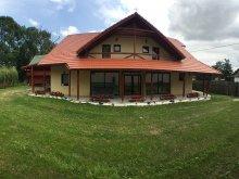 Cazare Delnița - Miercurea Ciuc (Delnița), Casa de oaspeți Fűzfa