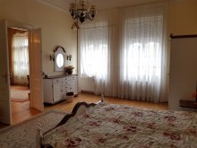 Cazare Tiszasziget, Apartament Gabriella