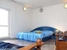 Accommodation Burduca, Unirii One Studio