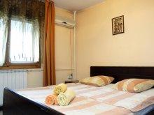 Accommodation Burduca, Unirii Three Apartment