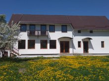 Accommodation Romania, Vendel Guesthouse