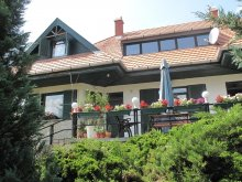 Accommodation Dudar, Erdei Guesthouse