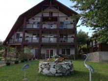 Accommodation Bârsău Mare, Franc Guesthouse