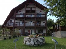 Accommodation Cluj-Napoca, Franc Guesthouse