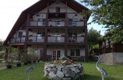 Accommodation Dănești, Franc Guesthouse