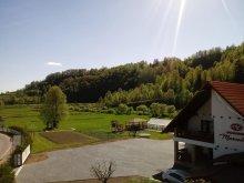 Accommodation Răstolița, Marceluca Guesthouse