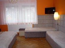 Accommodation Gyula, Abba Apartment