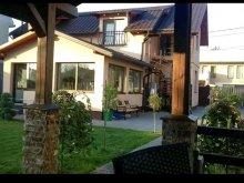 Accommodation Câmpia Turzii, Zece B&B