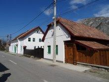 Accommodation Cornești (Mihai Viteazu), Panoráma Pension